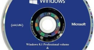 Windows Pro Vl With Office 2019 Activated Iso